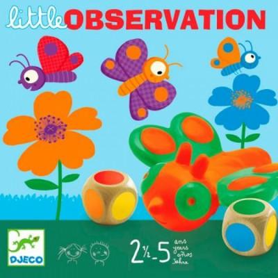 Little Observation